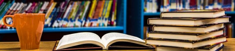 melhores livros para gestores